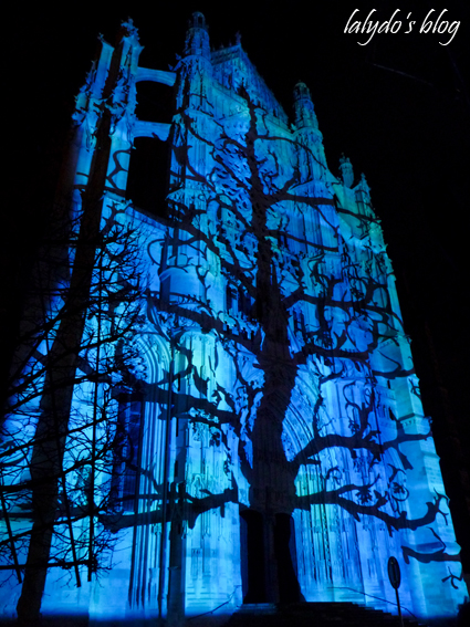 cathedrale infinie beauvais 16