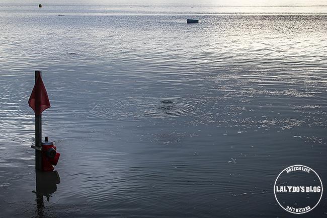 Grandes marees mont saint michel lalydo blog 9