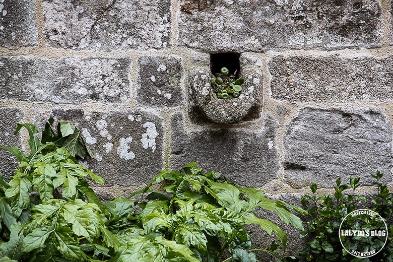 cloitre abbaye saint magloire lalydo blog 4