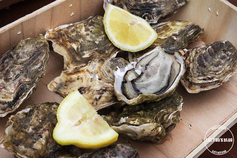 Ferme marine arin pointe de kerarzic lalydo blog 2