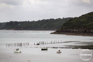 Ferme marine arin pointe de kerarzic lalydo blog 4