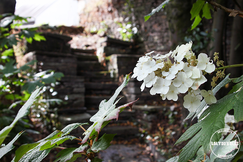 jardin malestroit lalydo blog
