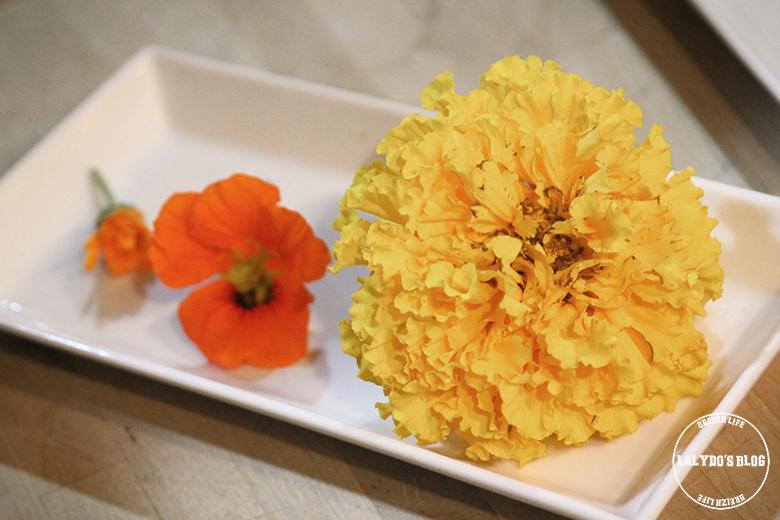 Moli del caso fleurs lalydo blog