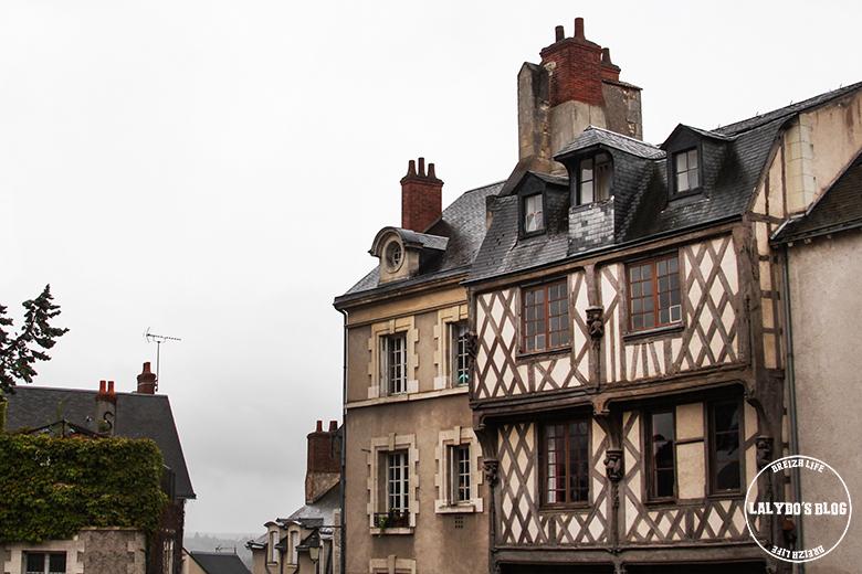 blois maison pan de bois lalydo blog