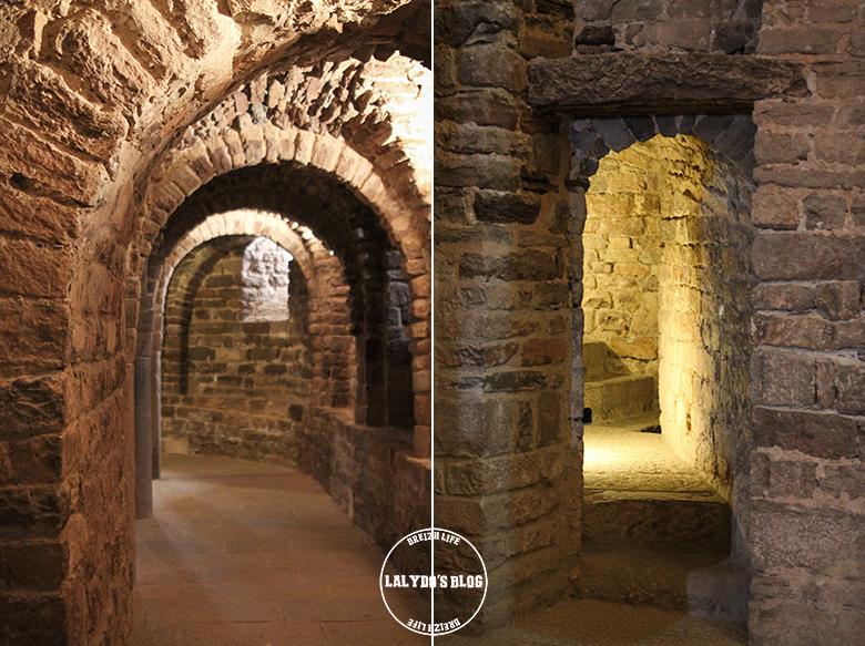 chateau de cardona collégiale saint vincent lalydo blog 2