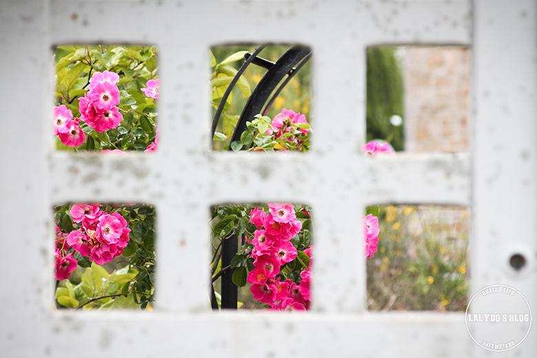 brehat fleurs lalydo blog 3