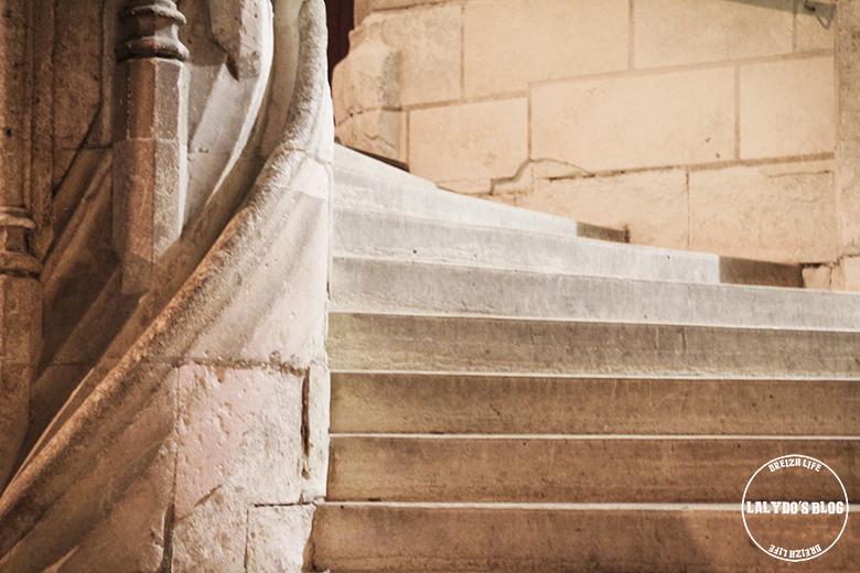 chateau blois escalier lalydo blog 2