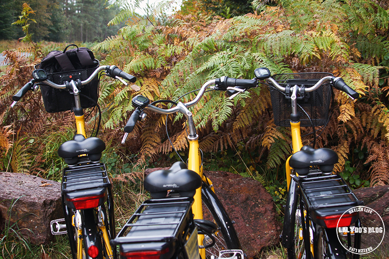 velos broceliande bike 1