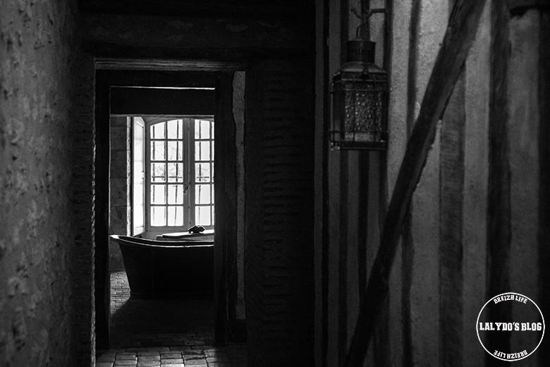 chateau de meung sur loire lalydo blog 24