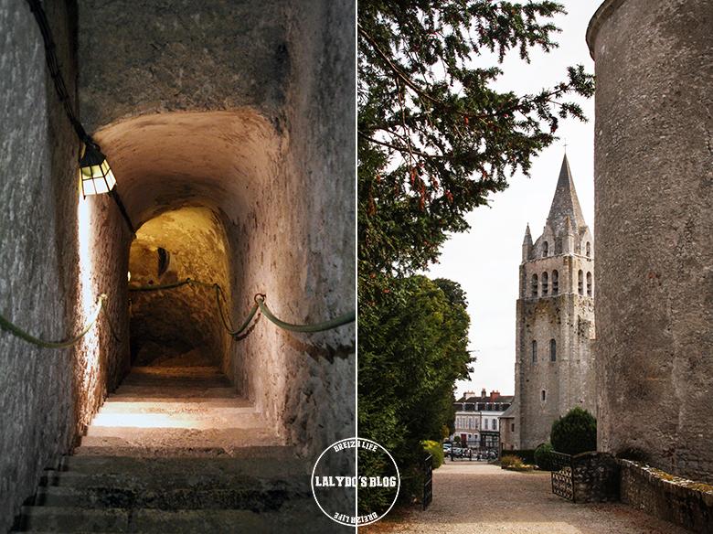chateau de meung sur loire lalydo blog 25