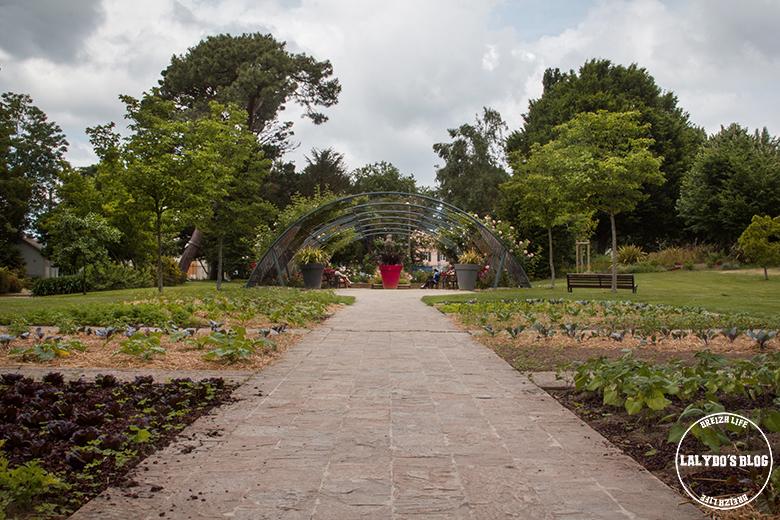 saint nazaire jardin plantes 3
