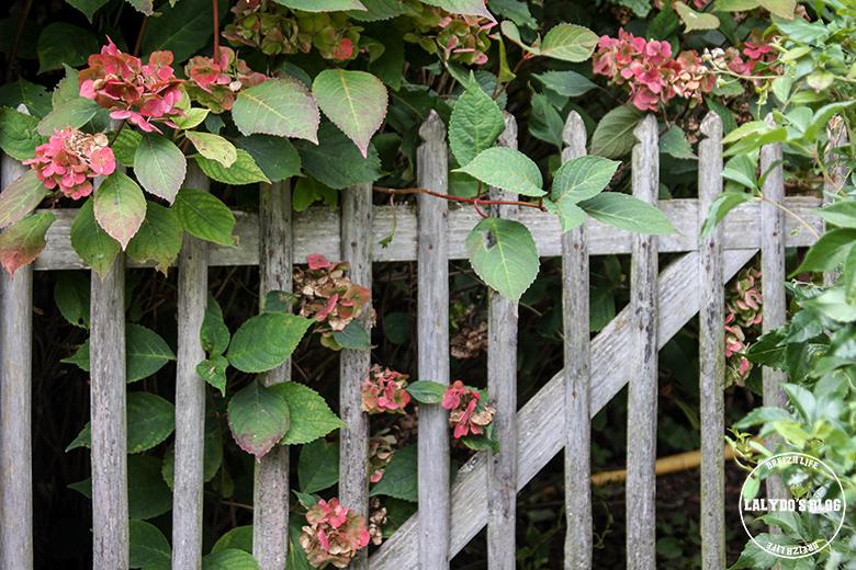 jardins de roquelin lalydo blog 13