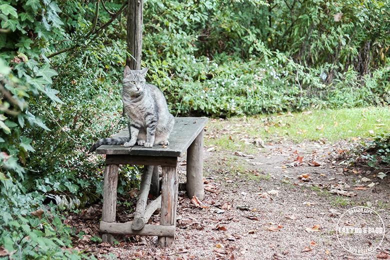 jardins de roquelin lalydo blog 21