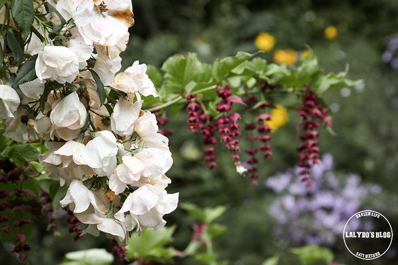jardins de roquelin lalydo blog 5