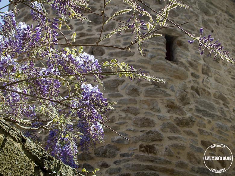 Saint-Malo En Gyropode lalydo 15