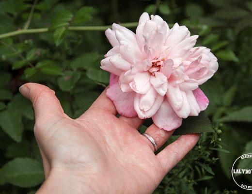 jardins de roquelin lalydo blog 4