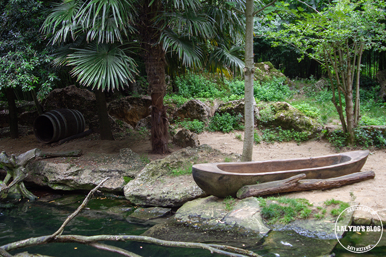Bioparc doue la fontaine 19