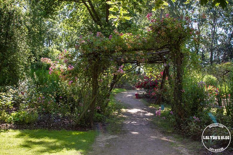 Chemin des roses doué la fontaine 9