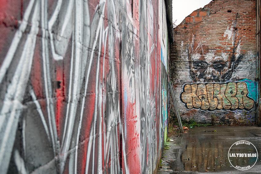 Street art redon 5