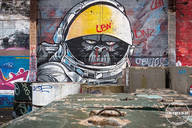 Street art redon 8
