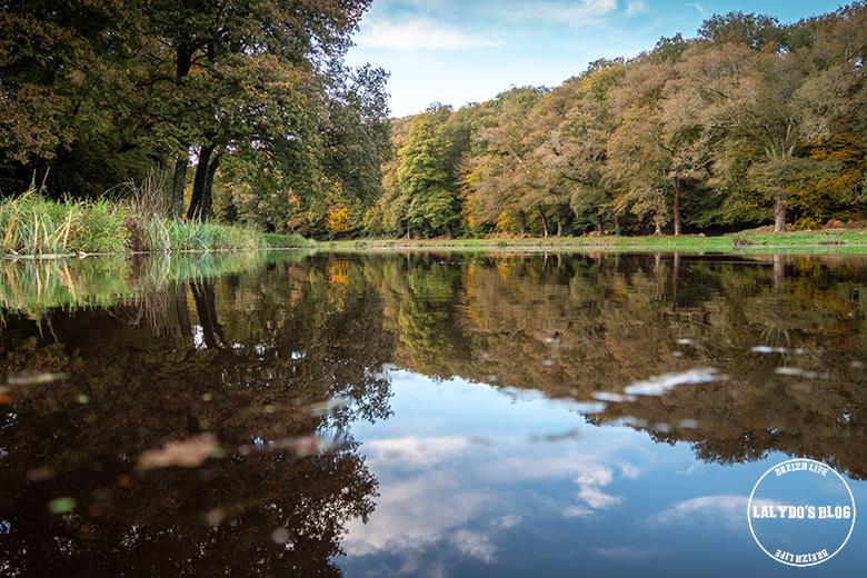 automne kreiz breizh nature site de la pitié 1