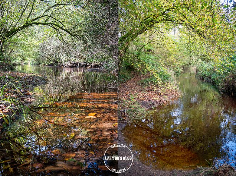 automne kreiz breizh nature lac kerne uhel 35