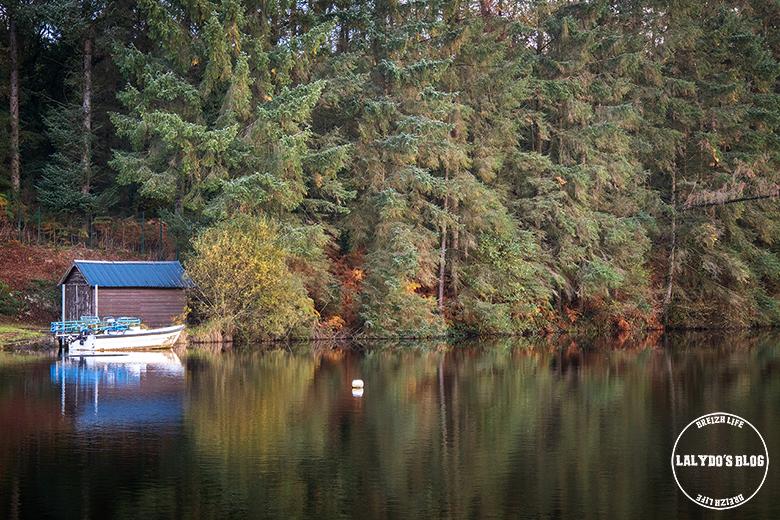 automne kreiz breizh nature lac kerne uhel 41