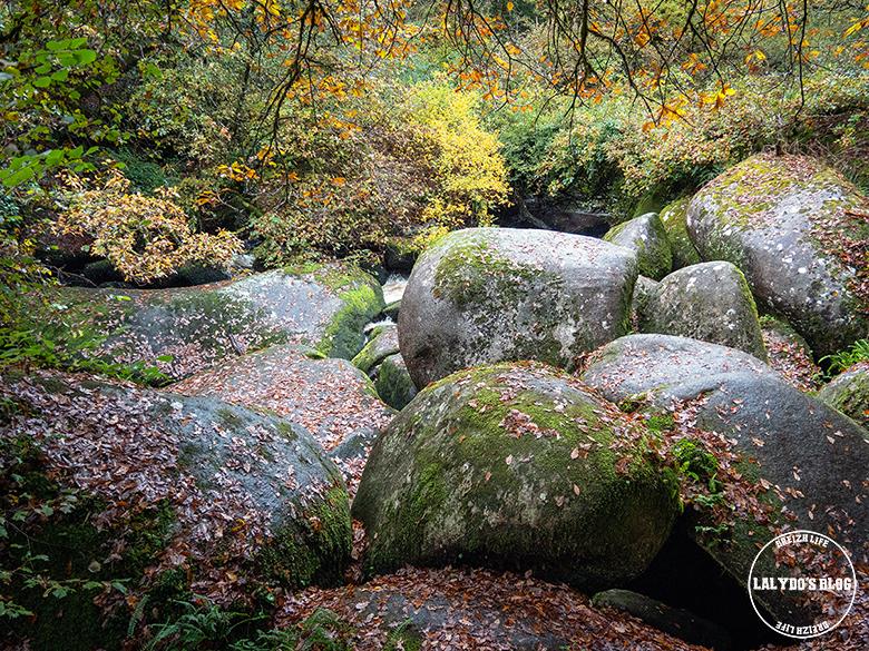 automne kreiz breizh nature toul goulic 21
